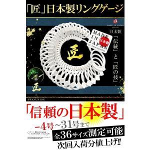 遂に 日本製 で最安値に挑戦 プロ仕様 リングゲージ 日本標準規格 全36サイズ -4号〜31号 指輪 測定 計測|swan-hoseki|09