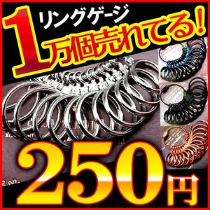 指輪のサイズが測れます 全4色 今だけ超安250円 リングゲージ 1号〜27号 全14サイズ測定可能 sg2-5 おしゃれ|swan-hoseki