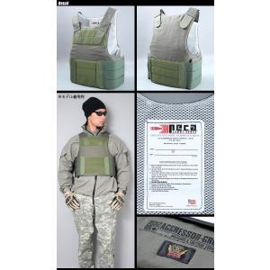 SWAT ORIGINAL(スワットオリジナル) アグレッサーグループ コラボ 別注 PECA ボディーアーマー RLCS レンジャー仕様 ver|swat