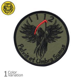 タイガーエンブ ODA1112 1st SFG グリーンベレー パッチ ミリタリーワッペン 【ネコポス】|swat