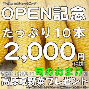 とうもろこし 甘い 野菜 産直 めぐみ 高原野菜 嬬恋村産 2L 10本