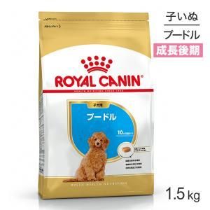 3日間限定!エントリーで誰でも5倍【正規品】ロイヤルカナン BHN  プードル 子犬用 (1.5kg)