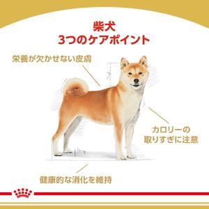 [正規品] ロイヤルカナン 柴犬 成犬用 8kg [送料無料:北海道・九州・沖縄除く]|sweet-pet|02