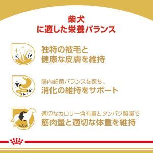[正規品] ロイヤルカナン 柴犬 成犬用 8kg [送料無料:北海道・九州・沖縄除く]|sweet-pet|03