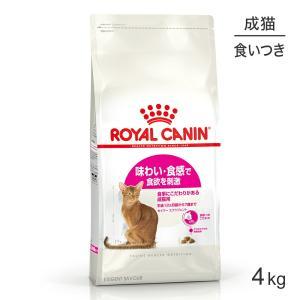 [正規品] ロイヤルカナン セイバーエクシジェント猫用(4kg  エクシジェント35/30[送料無料:北海道・九州・沖縄除く]