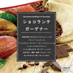 (PB)丸菱 製菓用チョコレート ショコランテガーデナー ホワイトチョコレート40% 1kg チャック付袋 (夏季冷蔵)|sweetkitchen|03