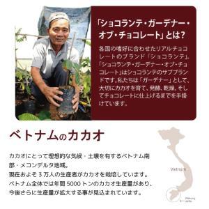(PB)丸菱 製菓用チョコレート ショコランテガーデナー ホワイトチョコレート40% 1kg チャック付袋 (夏季冷蔵)|sweetkitchen|04