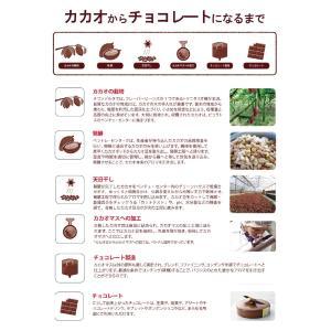 (PB)丸菱 製菓用チョコレート ショコランテガーデナー ホワイトチョコレート40% 1kg チャック付袋 (夏季冷蔵)|sweetkitchen|06