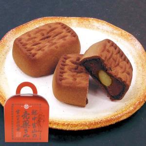 受賞銘菓 売薬さん(チョコ) 5個入