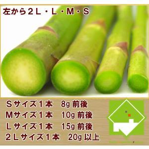 北海道グリーンアスパラ  富良野産 アスパラ Sサイズ100g |sweetvegetable|02