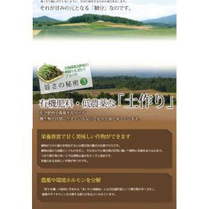 北海道グリーンアスパラ  富良野産 アスパラ Sサイズ100g |sweetvegetable|08