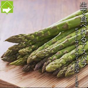 アスパラガス 北海道 グリーン アスパラ 1kg 富良野産 送料無料
