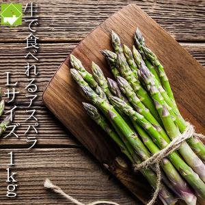 アスパラガス 北海道 富良野産 ハウス栽培 グリーンアスパラ Lサイズ 1kg 送料無料 4月上旬か...