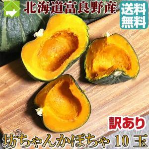 かぼちゃ 北海道富良野産 坊ちゃんかぼちゃ 訳あり 10玉 送料無料