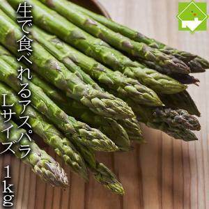 アスパラガス 北海道 グリーン アスパラ Lサイズ 1kg 富良野産 送料無料