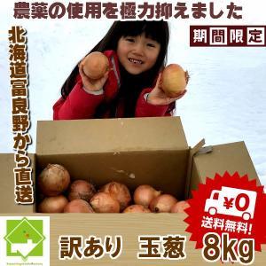 たまねぎ 訳あり 10kg 送料無料 北海道富良野産 ...