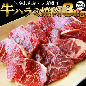 牛肉 肉 食品 ハラミ 焼肉 サガリ 3kg 250g×12P メガ盛り バーベキュー 美味しい 母...