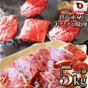 牛肉 肉 食品 ハラミ 焼肉 サガリ 5kg 250g×20P メガ盛り バーベキュー 美味しい 母...