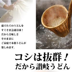 冷凍 讃岐うどん 本場 冷凍うどん 5食入り syabumaru 02