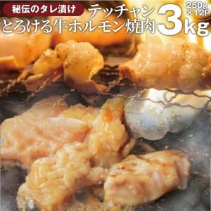 焼肉 牛肉 肉 ホルモン テッチャン モツ シマチョウ 3kg 250g×12袋 バーベキュー 焼くだけ 送料無料 *当日発送対象 まとめ買い割引|お肉のしゃぶまる