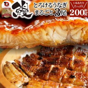 うなぎ蒲焼 3本入り(200g×3)たれ・山椒付き 鰻 かば焼き 土用 丑の日 湯煎 レンジOK 簡...