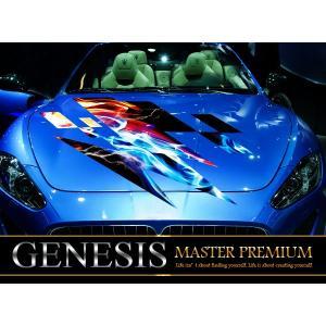 雷フロントカーステッカーfk06■炎バイナルグラフィック車ワイルドスピード系デカール限定|syarakugenesis