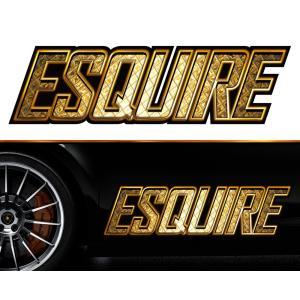 エスクァイアesquireサイドステッカーggss14/両サイドセット特大サイズ/かっこいい上質バイナルグラフィック/ワイルドスピード系デカール|syarakugenesis