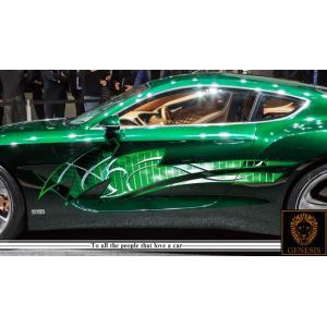 トライバルカーステッカーカラー17■バイナルグラフィック車ワイルドスピード系|syarakugenesis