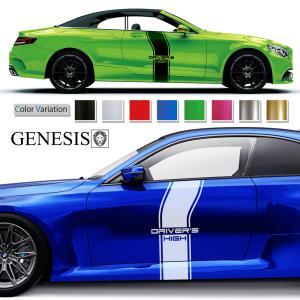 カーステッカー213■バイナルグラフィック車ワイルドスピード系 かっこいいデカール 14色から選べる|syarakugenesis