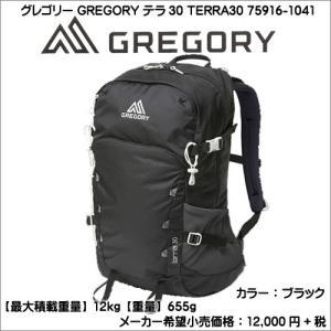 グレゴリー GREGORY テラ30 75916-1041 メンズ デイバック ブラック AC2-09001|syokandake