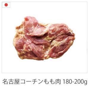 国産地鶏 名古屋コーチン もも肉 1枚 200-300g 愛知県産 鶏肉 冷蔵品 業務用|syokuniku