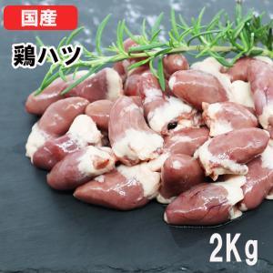 国産鶏肉 特選若鶏 鶏ハツ 12kg(2kg×6袋) ハート あべどり 十文字鶏 冷凍品 業務用 ブロイラー 1ケース|syokuniku
