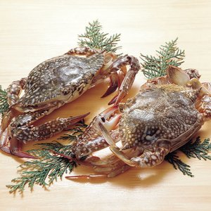 冷凍食品 業務用 ワタリ蟹 2ハイ入 中華料理 鍋物 エスニック料理 揚物 かに カニ 蟹|syokusai-netcom