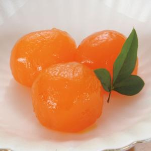 冷凍食品 業務用 温玉子味噌漬 約10g×24個入 温泉卵 温泉玉子 みそ漬け 和食 惣菜|syokusai-netcom