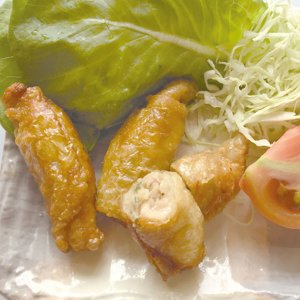 冷凍食品 業務用 鶏皮餃子 約25g×20個入    お弁当 揚げ餃子 一品 飲茶 点心 中華 エスニック ぎょうざ ギョーザ|syokusai-netcom