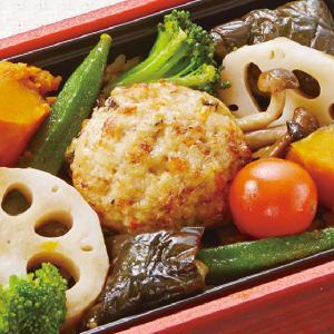冷凍食品 業務用 日本ハム 豆腐ハンバーグ 750g 30g×25個入 ドーム型 木綿豆腐 ハンバーグ syokusai-netcom