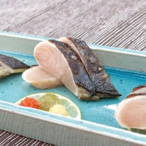 冷凍食品 業務用 刺身用 炙り寒鰆 2枚入     お弁当 春 旬 かんざわら さわら syokusai-netcom
