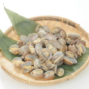 冷凍食品 業務用 殻付あさり 500g 51−60粒入   弁当 貝 カイ 自然素材 アサリ|syokusai-netcom