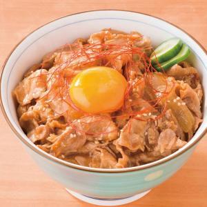 冷凍食品 業務用 Jg豚スタミナ丼の素 1食165g  弁当 豚肉 どんぶり ご飯 丼の具 syokusai-netcom