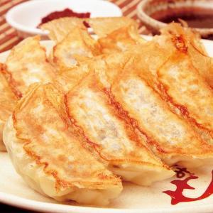 冷凍食品 業務用 もちもち生姜餃子 1kg 50個   弁当 ギョーザ ギョーザ ぎょーざ 餃子 ぎょうざ 中華 点心|syokusai-netcom