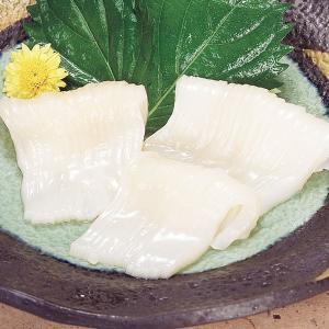 冷凍食品 業務用 イカソーメン 真イカ 8柵 2L 約500g お刺身 寿司ネタ イカ いか 寿司|syokusai-netcom