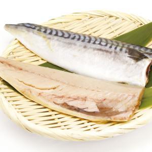 冷凍食品 業務用 塩サバフィーレ3枚 約450g    お弁当 塩味控えめ 魚 さば 鯖|syokusai-netcom