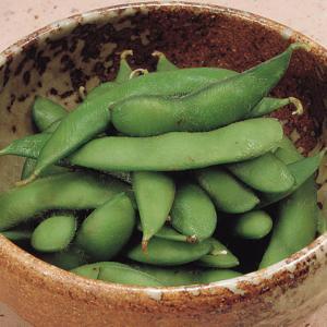 冷凍食品 業務用 枝豆塩ゆで 500g 時短 野菜 まめ 豆 マメ|syokusai-netcom