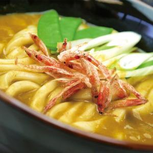 業務用 カレーうどんつゆ 280g  販売期間 10-2月    鍋 つゆ だし 調味料 かれーうどん 鍋の素 鍋調味料 syokusai-netdrycom