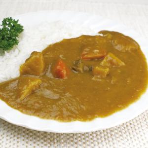業務用  野菜もしっかり ビーフカレー 1食200g syokusai-netdrycom
