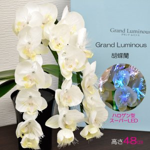 グランドルミナス/05胡蝶蘭/高さ48cm/LED/盆提灯/盆ちょうちん/灯篭/造花|syosyudo