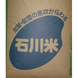 29年度産 新米!!石川県産コシヒカリ 無洗米5キロ増量可能...