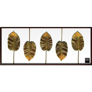 F-style Frame Philodendron scandens|syoukai-tv