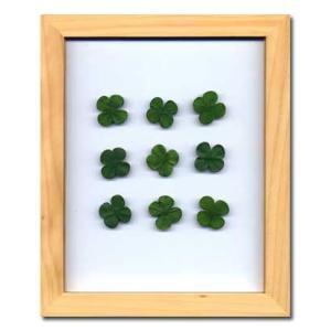 PLANT Frame (プラントフレーム・精密な人工観葉植物)・スタンドタイプ W225×H275×D15mm 0.6kg Clover|syoukai-tv