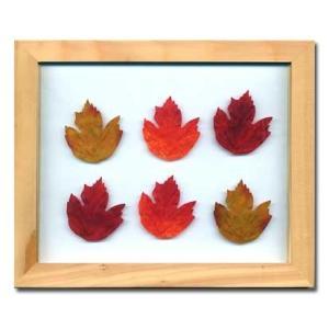 PLANT Frame (プラントフレーム・精密な人工観葉植物)・スタンドタイプ W225×H275×D15mm 0.6kg Maple Leaf|syoukai-tv